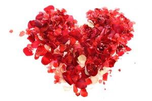 petal heart